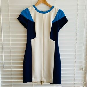 Club Monaco Blue + White Colour Blocking Dress